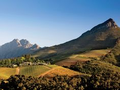 South Africa's Winelands—from Stellenbosch to Franschhoek—are worth more than just a day trip.