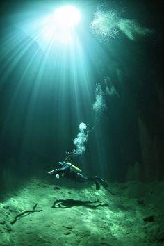 1年でたった2日間しか照らされない光をたどって撮影された海底写真が神秘的すぎる件 | IRORIO(イロリオ) - 海外ニュース・国内ニュースで井戸端会議