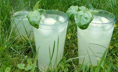 Summer Drinks, Glass Of Milk, Detox, Smoothie, Food And Drink, Syrup, Alcohol, Essen, Summer Beverages