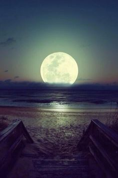 Moonlight in Brazil