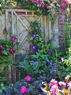 My Garden Diaries-love the trellis