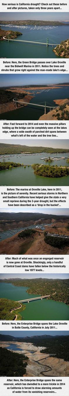 How serious is California drought? Check out these before and after pictures, taken only three years apatt. Before: Here, the Green Bridge passes over Lake Oroville near the Bidwell Marina in Notice the trees and shrubs that grow right against the Lake Oroville, Meanwhile In America, California Drought, Wtf Fun Facts, Fascinating Facts, Amazing Facts, Climate Change Effects, Before And After Pictures, Trees And Shrubs
