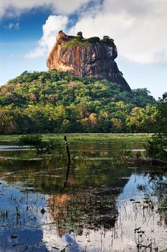 Sigiriya Rock in stunning Sri Lanka.  Check out our full guide to this awesome country at https://www.undiscovered.guide/sri-lanka