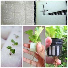 Mesh Cup Slit Pots Sponge Plant Seeds Start Grow Kit Hydro Aeroponic Agriculture