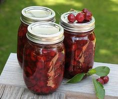 Homemade canned cherry pie filling