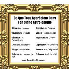 Ah bon ? Cancer Horoscope Dates, Horoscope Memes, Zodiac Memes, Horoscopes, Astrology Aquarius, Astrology Zodiac, Astrology Signs, Zodiac Signs, Astrological Sign
