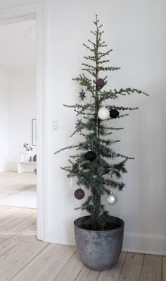 how to decorate your christmas tree pin on weihnachten pin by gricel noble on christmas tree 53 best christmas trees images 163 best holiday images the Noel Christmas, Green Christmas, Christmas 2019, All Things Christmas, Simple Christmas, Winter Christmas, Christmas Presents, Minimal Christmas, Natural Christmas