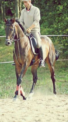 My coach and my horse