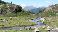 ruisseau du Garbet à Garbettou;alt:1400m