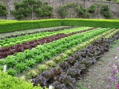 vegetable garden with formal edging..nice
