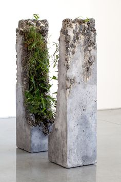 Jamie North Fills Concrete With Australian Plants 'Terraforming' refers to the deliberate manipulation of an environment to make it capable of sustaining life. Artist Jamie North turned this term into a noun. Cement Art, Concrete Cement, Concrete Furniture, Concrete Crafts, Concrete Projects, Concrete Design, Concrete Planters, Concrete Sculpture, Sculpture Art