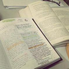 50 ideias de cadernos para se organizar