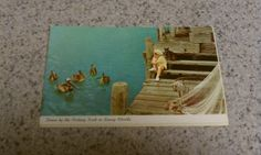 Vintage ephemera postcard that has not been used. Features Florida fishing dock, pelicans. No stains. A llittle vintage yellowing. No tears.