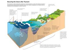 Great diagram to use for looking at what makes places vulnerable to tsunami.