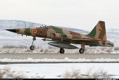 Northrop F-5N Tiger II aircraft picture