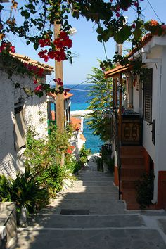 santoriniblog: Samos island By images of greece