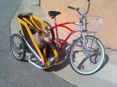 bicycle pet sidecar trailor   The Bicycle Mechanic: Bicycle Sidecars