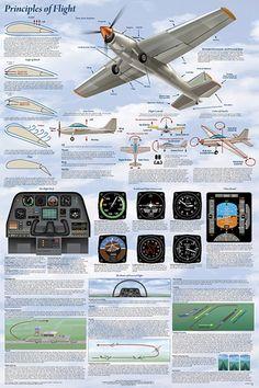 Basics of Flight Aviation Poster More