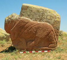 Two life-sized lion sculptures, made by the Hittites, have been found in Turkey. Now archaeologists are trying to figure out what they were for. One idea is that the statues, created between 1400 and 1200 B.C., were meant to be part of a monument for a sacred water spring, the researchers said. The lifelike lions were created by the Hittites who controlled a vast empire in the region at a time when the Asiatic lion roamed the foothills of Turkey.