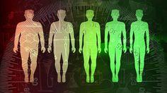 Moni uskoo, että vihreä tee laihduttaa ja huonojen yöunien takia lihoo – Asiantuntija kertoo, mitkä laihduttamiseen liittyvät uskomukset pitävät paikkansa ja mitkä eivät - Hyvinvointi - Helsingin Sanomat
