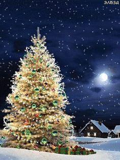 Christmas Animated Gif, Christmas Tree Gif, Merry Christmas Pictures, Beautiful Christmas Trees, Christmas Scenes, Merry Christmas And Happy New Year, Christmas Greetings, Winter Christmas, Christmas Lights
