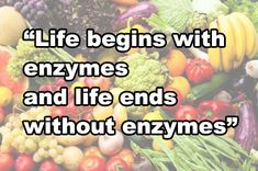"""Life begins with enzymes and life ends without enzymes"""