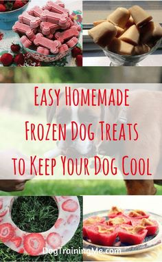 Homemade frozen dog treats can help to cool your dog down in summer. They are a great way to keep your dog cool in the heat and provide healthy nourishment and hydration at the same time. Read our article for a list of frozen dog treat recipes.