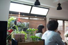 ラストレーターの伊藤和人さんとシラキハラメグミさんによるイラストレーションユニット「seesaw.」がアンティークでモダンにリノベーションした素敵なマンション_2