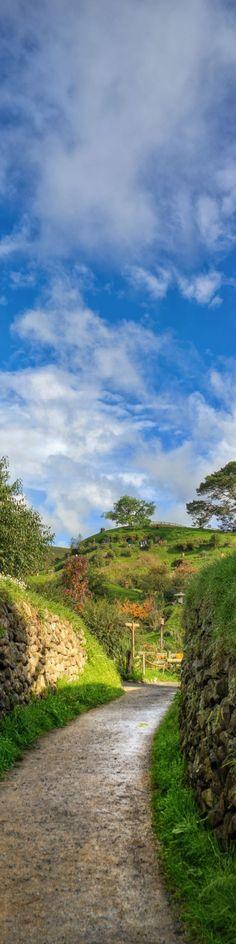 """""""The road that goes into Hobbiton"""", Matamata, North Island, New Zealand"""