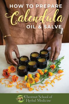 How to Make Calendula Oil & Salve // Chestnut School of Herbal Medicine  #calendula #calendulasalve #herbalsalve #salve #herbalist #herbalism #herbalmedicine #herbs