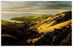 Coromandel  - location unknown. NZ