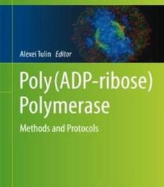 Poly(Adp-Ribose) Polymerase: Methods And Protocols PDF