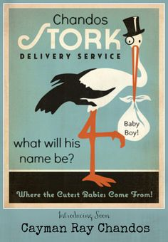 Personalized Stork Birth Announcement - Baby Name Reveal