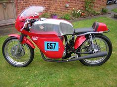 Ducati 350 N/C Race/Parade Bike
