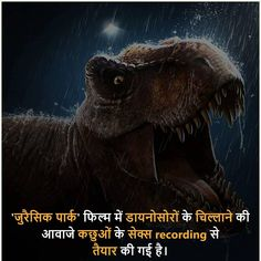 Amazing Things In Hindi Some Amazing Facts, Interesting Facts About World, Unbelievable Facts, Amazing Things, Gernal Knowledge, General Knowledge Facts, Knowledge Quotes, Real Facts, Weird Facts