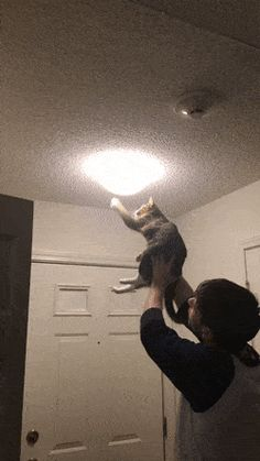I had to bring in an expert to deal with the moth situation http://ift.tt/2xY54h0