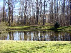 """Still Waters--Notes from a Virginia Shire: """"Still Waters"""""""