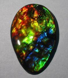 Ammolite; opal-like organic gemstone It is made of the fossilized shells of ammonites