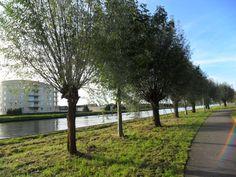 8935 Hanximakanaal / Froskepollestr. zonnige herfstdag okt 2015 foto Gerda