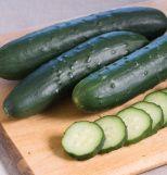 Slicing Cucumbers Organic Seeds $3.95