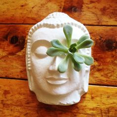 Eye of the Buddha Planter