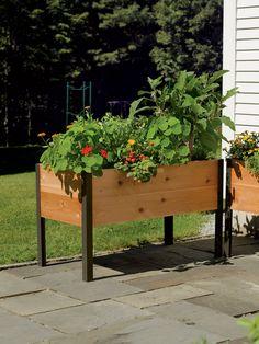 Grow Box: 2' x 4' Elevated Cedar Planter Box | Made in Vermont