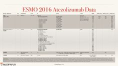 "Summary slides on the most important Atezolizumab (Tecentriq™) ESMO 2016 data. Maybe used as long as the source ""MediPaper - http://Medi-Paper.com"" is properly referenced. See for details and PPT download: http://medi-paper.com/esmo-2016-atezolizumab/  #ESMO16 #Atezolizumab #Tecentriq #Genentech #Roche #lungcancer #skincancer #bladdercancer #ESMO2016 #ESMO #immunecheckpoint #immunotherapy #PDL1 #PD1 #immunooncology"