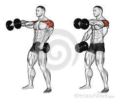 Exercising. Lifting dumbbell forward alternately