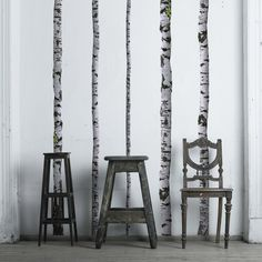 Birch Tree Wall Decals - WallsNeedLove Wall Decals - $89.00 - domino.com For the laundry room!