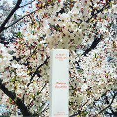 Your skin is like a flower,beautiful and delicate.Take care of your skin everyday with Alberto Armellini Beauty & Skin Health.#skin #flowers #beauty #spring #biolifting #arganoil #hyaluronicacid #bbloggers #face #luxury #cosmetics #healthyskin #elegant #skinhealth #beautiful #albertoarmellinibeauty #AAbeauty #skincare #cosmetici #love #skincareluxury #instabeauty #luxurylife #glam #beautyblogger #madeinitaly