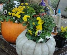 Beautiful fall planter for use indoors or out!