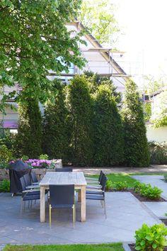 Als würden die Thujen schon seit Jahren dort wachsen - sie passen sehr gut zum Garten und werden den neuen Besitzern mit Sicherheit noch viel Freude machen!