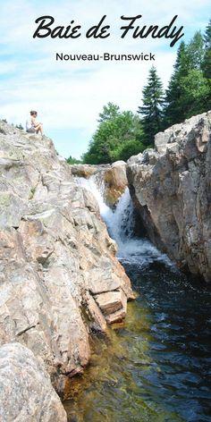 Découvrez le bonheur de la nature dans la baie de Fundy au Nouveau-Brunswick, Canada !