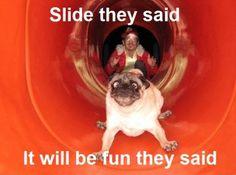 slide :))